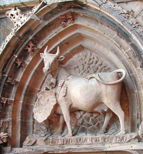 Alan (31) Vache du Palais Episcopal